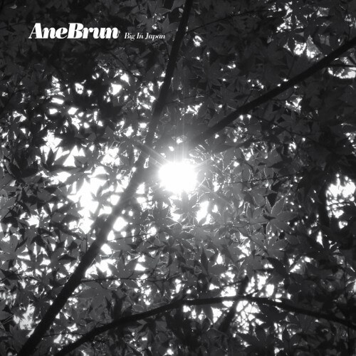 Ane Brun - Big In Japan - Single Cover