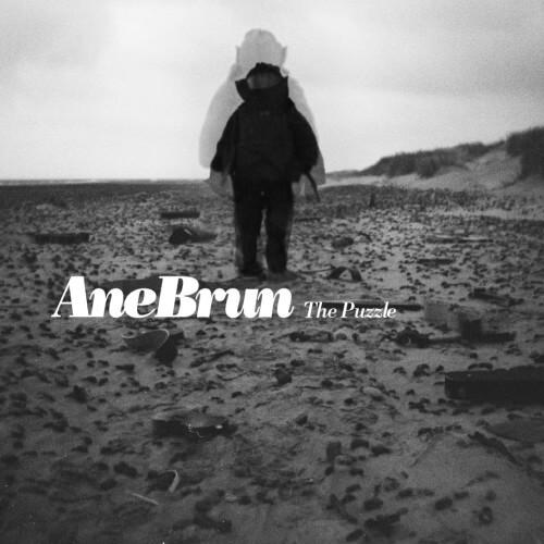 Ane Brun - The Puzzle artwork