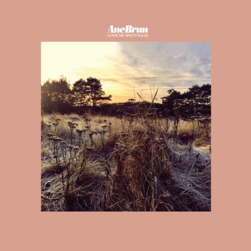 Ane Brun - Leave Me Breathless - Album cover artwork